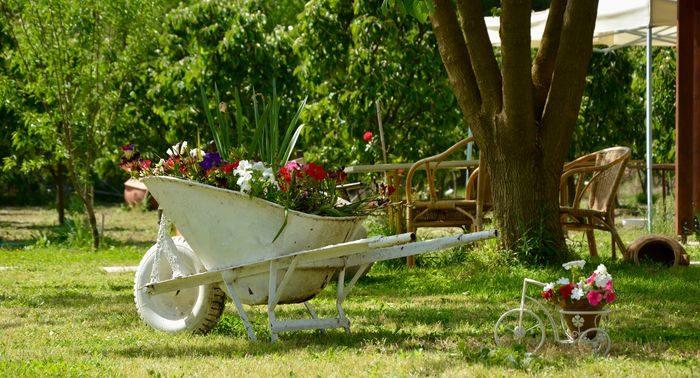 wheelbarrow-with-flowers700